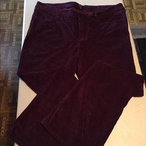 NYDJ Plus Bootcut Corduroy Port Burgundy Jeans 20W